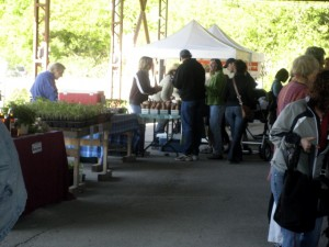 Brick Works Farmers Market
