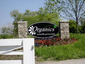 Organics Family Farm