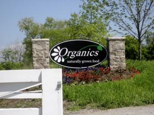 Organics Foods Farm.jpg